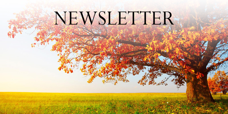 Newsletter - Autumn 2017